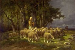Sheep | Charles Emile Jacque | Oil Painting