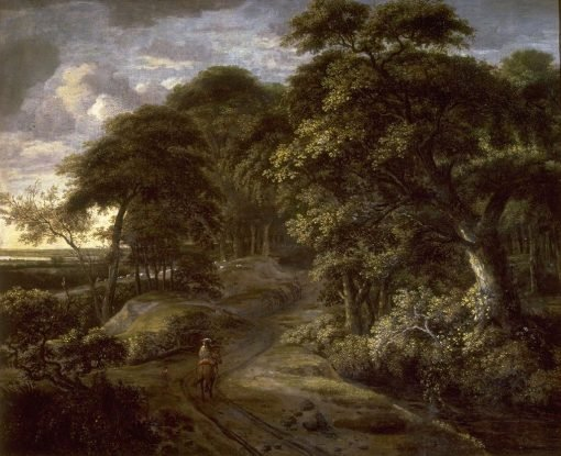 Entrance to a Forest | Philips Koninck | Oil Painting