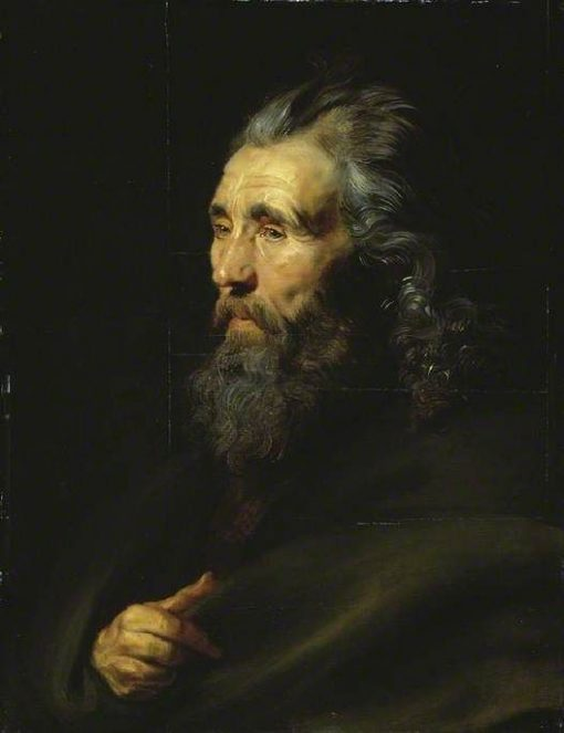 Head Study of a Bearded Man | Peter Paul Rubens | Oil Painting