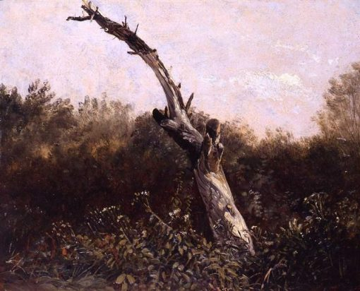 Study of a Dead Tree | Carl Gustav Carus | Oil Painting