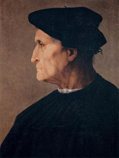 Portrait of a Man in Profile | Rosso Fiorentino | Oil Painting