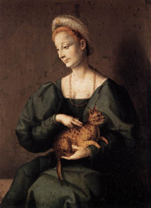 Woman with a Cat   Il Bacchiacca   Oil Painting