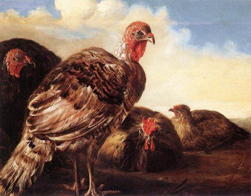 Domestic Fowl | Aelbert Cuyp | Oil Painting