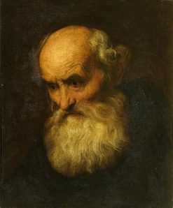 Head of a Bearded Old Man (style of Paolo Veronese) | Anthony van Dyck | Oil Painting