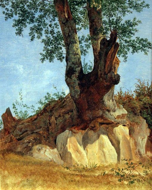 Tree in Campagna | Heinrich Carl Reinhold | Oil Painting