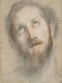 Study for the Head of Christ | Federico Barocci | Oil Painting