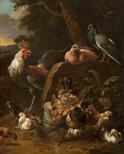 Poultry and Pigeons | Melchior d'Hondecoeter | Oil Painting