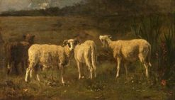 Sheep | Constant Troyon | Oil Painting