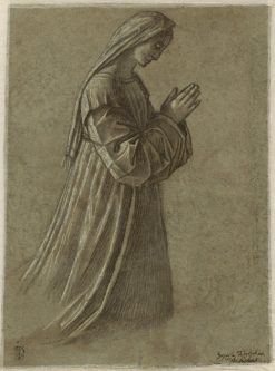 Study of the Virgin | Vittore Carpaccio | Oil Painting