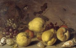 Still Life with Fruit | Balthasar van der Ast | Oil Painting