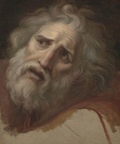 Head of Laocoon | Andrea Appiani | Oil Painting