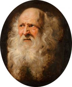 Head of an Old Man | Peter Paul Rubens | Oil Painting