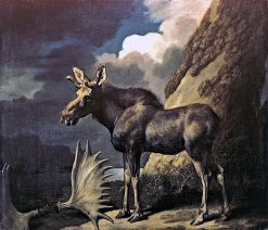The Duke of Richmond's First Bull Moose | George Stubbs | Oil Painting