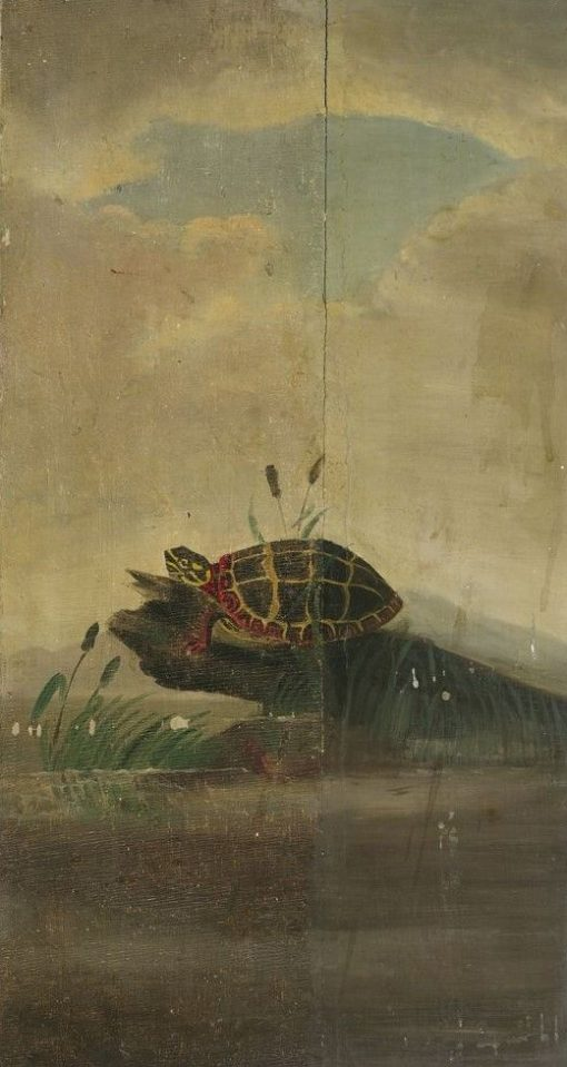 Tortoise Resting on a Log | William Stanley Haseltine | Oil Painting