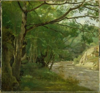 Ravine in the Morvan