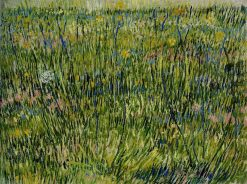 Patch of Grass   Vincent van Gogh   Oil Painting