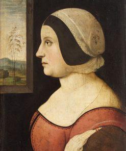 Female Portrait | Amico Aspertini | Oil Painting