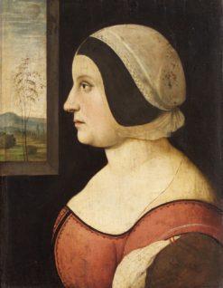 Female Portrait   Amico Aspertini   Oil Painting