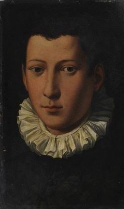 Portrait of a Young Man | Alessandro Allori | Oil Painting