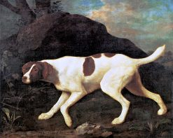 Phyllis' a Pointer of Lord Clermont's | George Stubbs | Oil Painting