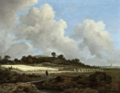 View of Grainfields with a Distant Town | Jacob van Ruisdael | Oil Painting