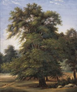 Study of a Tree | Jean Victor Bertin | Oil Painting