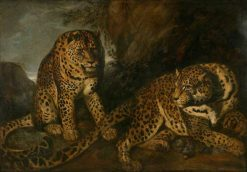 Leopards | Frans Snyders | Oil Painting