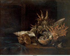 Still Life: Shells   Willem Kalf   Oil Painting