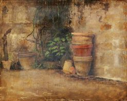 Claypots with Vines and Cactus Plants