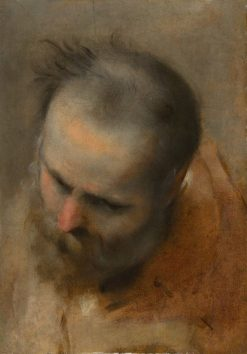Head of a Bearded Man Looking to the Lower Left | Federico Barocci | Oil Painting