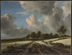 Wheat Fields | Jacob van Ruisdael | Oil Painting