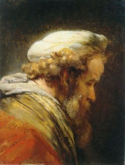 Study of an Old Man | Rembrandt van Rijn | Oil Painting
