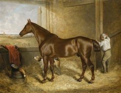 Emperor in his Stall | Harry Hall | Oil Painting