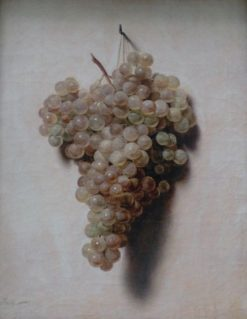 White Grapes | Louis LEopold Boilly | Oil Painting
