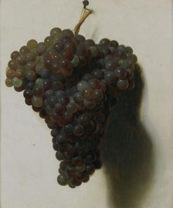 Black Grapes | Louis LEopold Boilly | Oil Painting