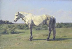 A Grey Horse in a Field | Rosa Bonheur | Oil Painting