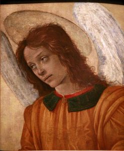 Bust of an Angel | Filippino Lippi | Oil Painting