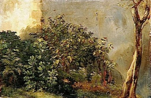 Study of Plants | Achille Etna Michallon | Oil Painting