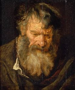 Study of the Head of an Old Man | Anthony van Dyck | Oil Painting