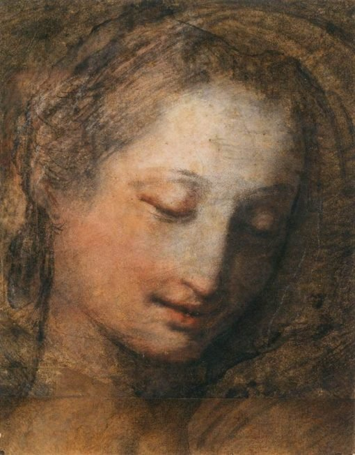 Face of a Woman Looking Down | Federico Barocci | Oil Painting