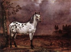 The Spotted Horse | Paulus Potter | Oil Painting