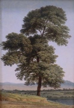 Study of a Tree by the Tiber | Louis Gauffier | Oil Painting
