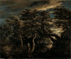 Marsh in a Forest at Dusk | Jacob van Ruisdael | Oil Painting