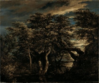 Marsh in a Forest at Dusk   Jacob van Ruisdael   Oil Painting