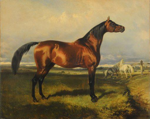 Wild Horses   Alfred de Dreux   Oil Painting