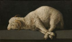 Agnus Dei (the Lamb of God) | Francisco de Zurbaran | Oil Painting