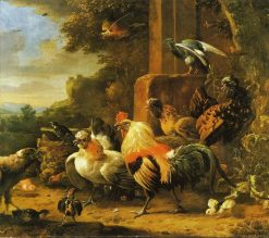 Bird of Prey in a Poultry Yard | Melchior d'Hondecoeter | Oil Painting