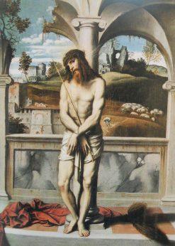 Christ at the Column | Moretto da Brescia | Oil Painting