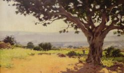 Fig Tree | Isidro Nonell Monturiol | Oil Painting