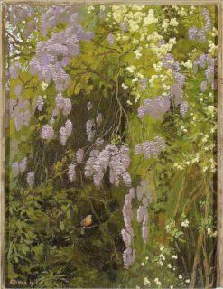 Wisteria(also known as Kwitna?ce glicynie) | Edward Okun? | Oil Painting
